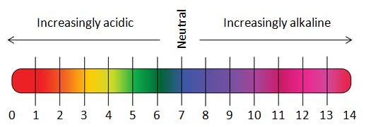 Hair color levels range from